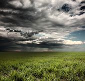 stock photo of rain cloud  - Storm clouds with rain over meadow with green grass - JPG