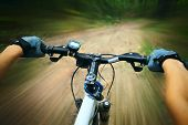 stock photo of bike path  - Riding on a bike in forest - JPG