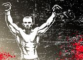 Постер, плакат: Бокс плакат