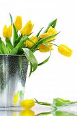 picture of flower vase  - Spring Flowers - JPG