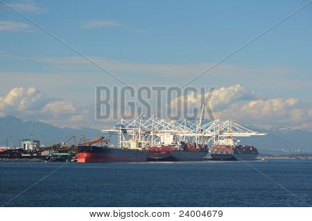 Deltaport and Coal Terminal, Delta, British Columbia