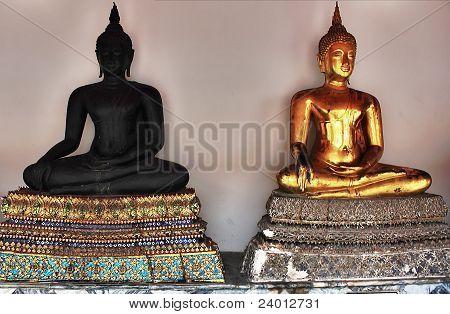 buddha twin
