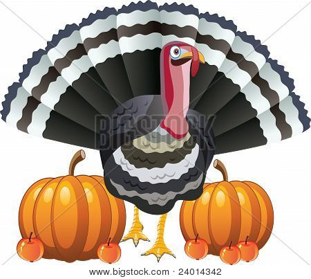 Turkey, Pumpkins And Apples For Thanksgiving Day
