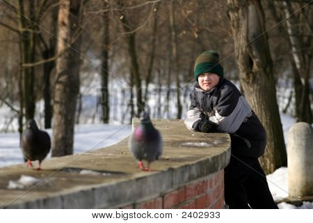 The Teenager Observes Of Pigeons