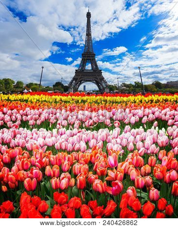 poster of Eiffel Tower With Fresh Spring Flowers, Paris, France