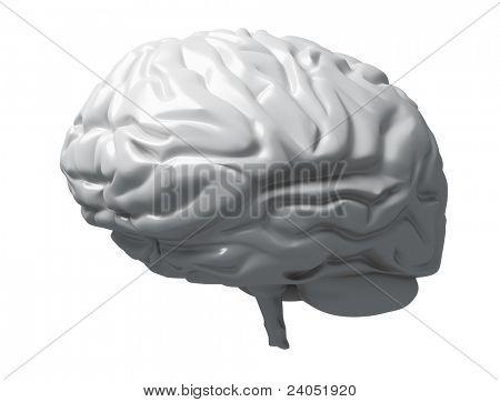 Gray Brain Matter