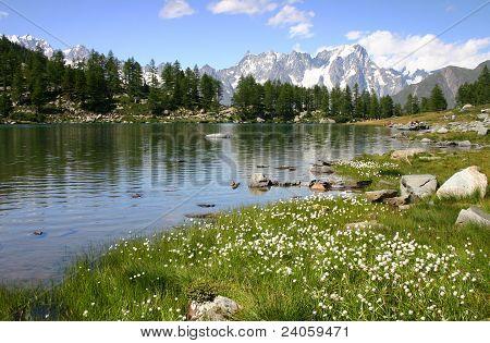 Arpy lake