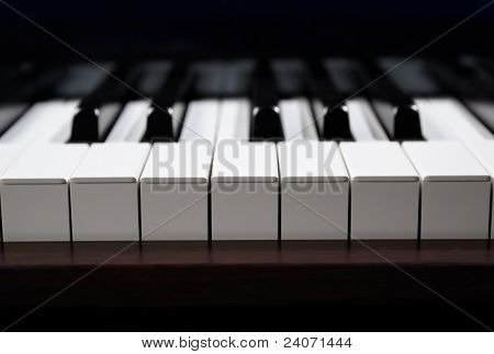 An Octave Of Piano Key