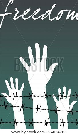 Hands Behind A Barbed Wire Prison With The Word Freedom