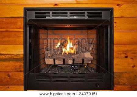 Fireplace Whole