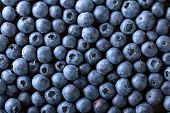 Ripe And Juicy Fresh Picked Blueberries Closeup. Blueberry Background.top View . poster