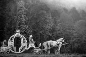 Retro Cabman In Wig Sitting In Vintage Carriage Of Cinderella With White Horses In Green Deep Forest poster