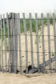 picture of cape-cod  - Cape Cod Massachussets Wooden Fence on Beach - JPG