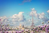 Paris City Roofs With Eiffel Tower From Above At Spring With Flowers, Paris France poster
