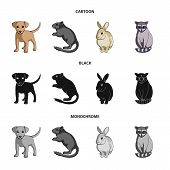 Puppy, Rodent, Rabbit And Other Animal Species.animals Set Collection Icons In Cartoon, Black, Monoc poster