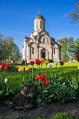 A Lazy Grey Cat, Relaxing In Front Of The Spassky Cathedral In The Andronikov Monastery, Moscow. poster