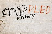 foto of crip  - Misspelled gang graffiti in a bad neighborhood - JPG
