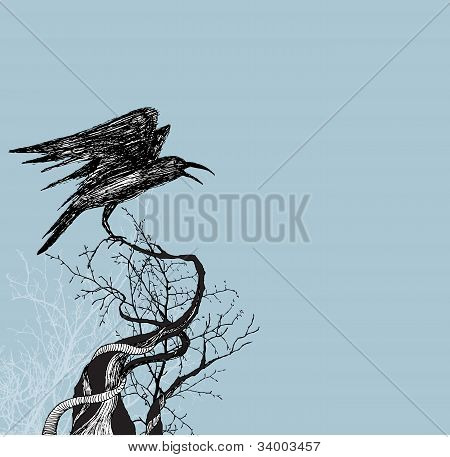 Crow branches