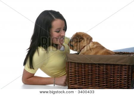 Cute Teen Leaning Toward Little Dog In Basket