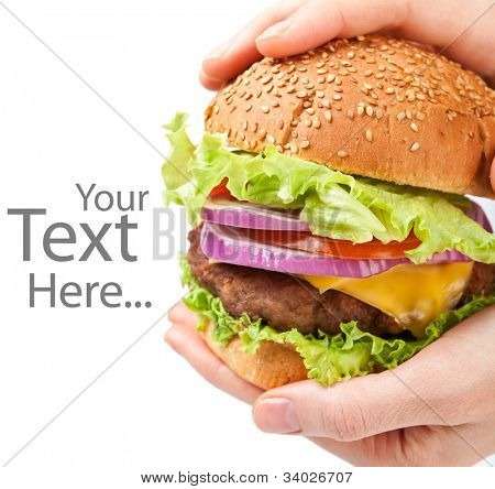 big cheeseburger holding in hands