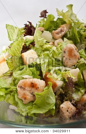 traditional caesar salad with chicken close-up
