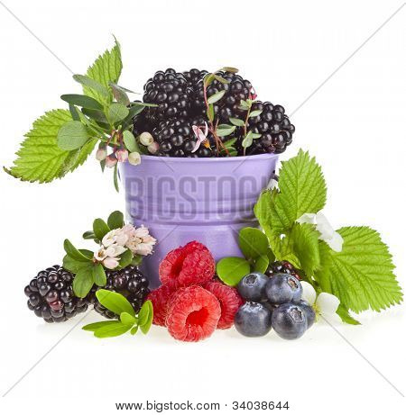 delicious berries bramble dewberry in bucket with bloom flower isolated on a white background