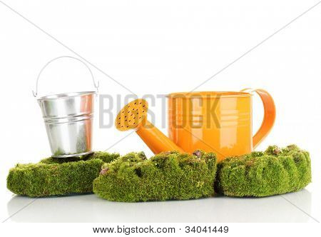Green moss with watering can and metal bucket isolated on white