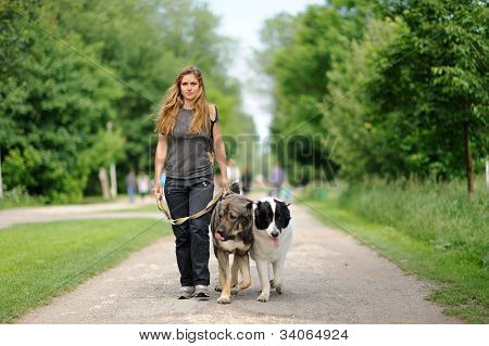 Happy Girl  Walking With  Dogs