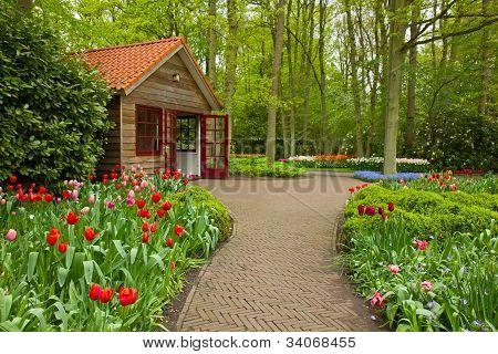 Keukenhof garden, Holland