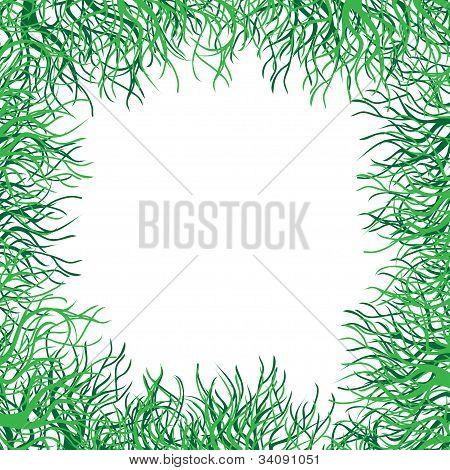 green grass vector frame