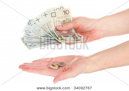 Polish money isolated in hand