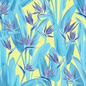 Strelitzia Reginae Tropical Flower Vector Seamless Pattern. Bohemian Tropical Plant Fabric Print Des poster