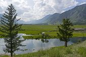 River Valley In The Mountains. Zhom-bolok River, East Sayan, Buryatia, Siberia, Russia. poster