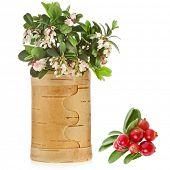 Постер, плакат: Цветение брусники брусники с свежими ягодами в Березовая корзинка изолированные на белом