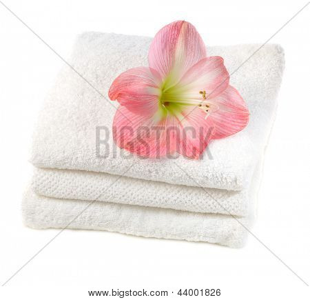 white towels with pink  lily flower   isolated on white background