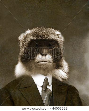 A man whit a monkey head
