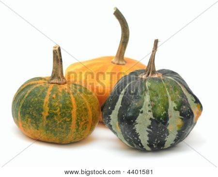 Three Fancy Pumpkins Isolated Over White