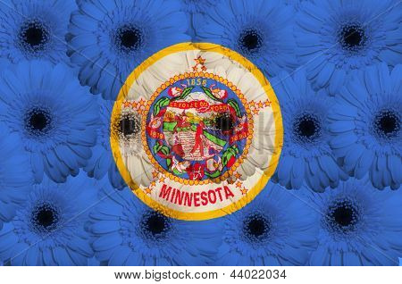 Stylized  Flag Of American State Of Minnesota    With Gerbera Flowers