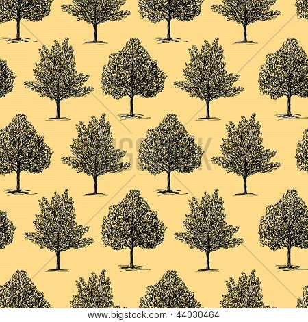 Background With A Hand Drawn Trees