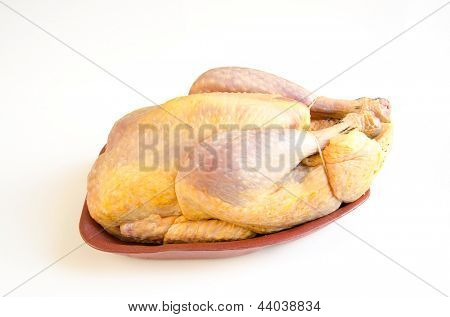 Organic raw guinea fowl