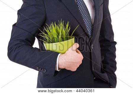 Business man holding a green potted plant.