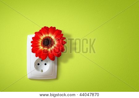 Flower in electric socket. Ecology concept of electricity friends with Nature.