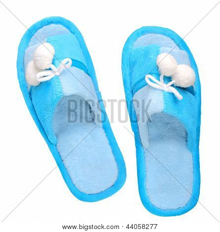Domestic Blue Slippers
