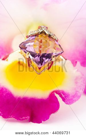 Golden Amethyst Ring On Flower Orchid