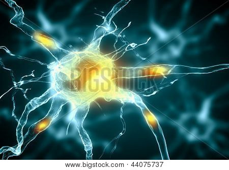 Illustration of a nerve cell