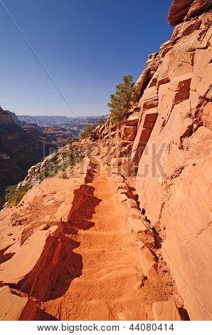 Trail Into A Desert Canyon