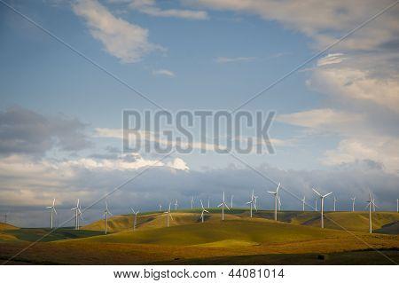 Wind Turbines Among Wheat Fields