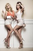 foto of wearing dress  - Two sexy women wearing mini skirts - JPG