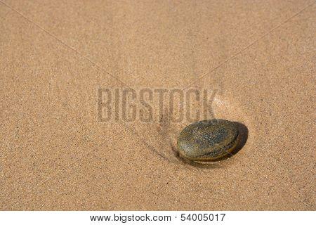 Stone on a sandy beach
