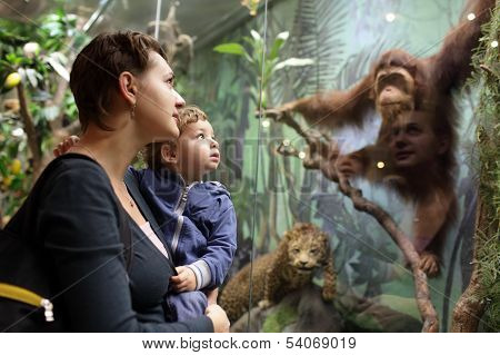 Family Looking At Monkey
